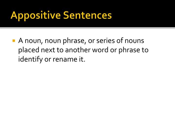 Appositive sentences