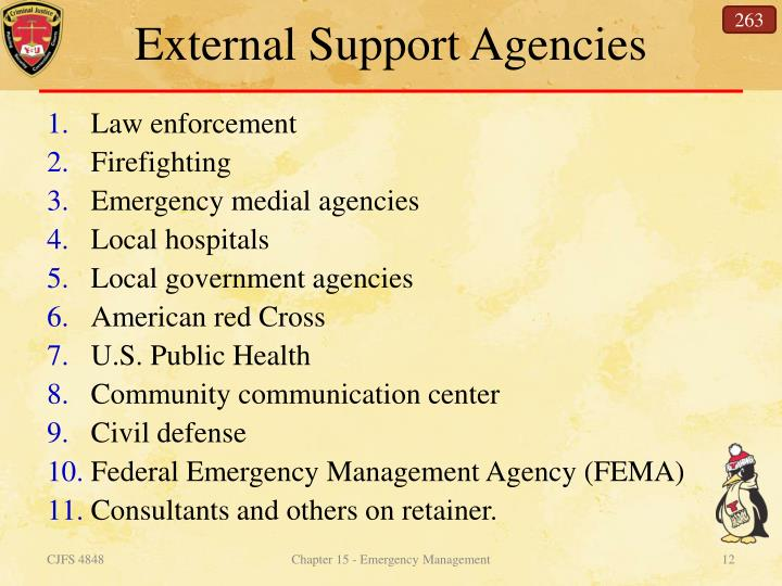 External Support Agencies