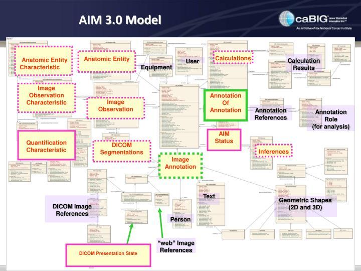 AIM 3.0 Model