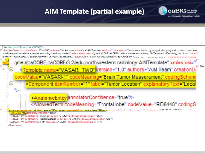 AIM Template (partial example)