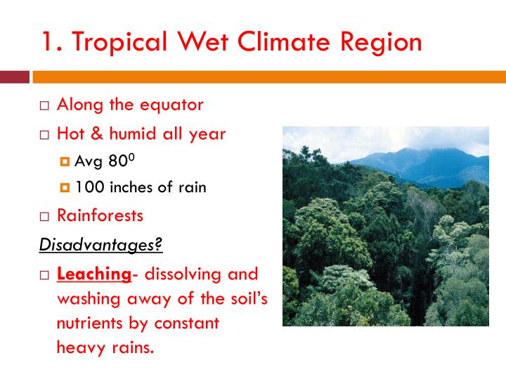 1. Tropical Wet Climate Region