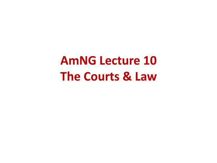 amng lecture 10 the courts law n.