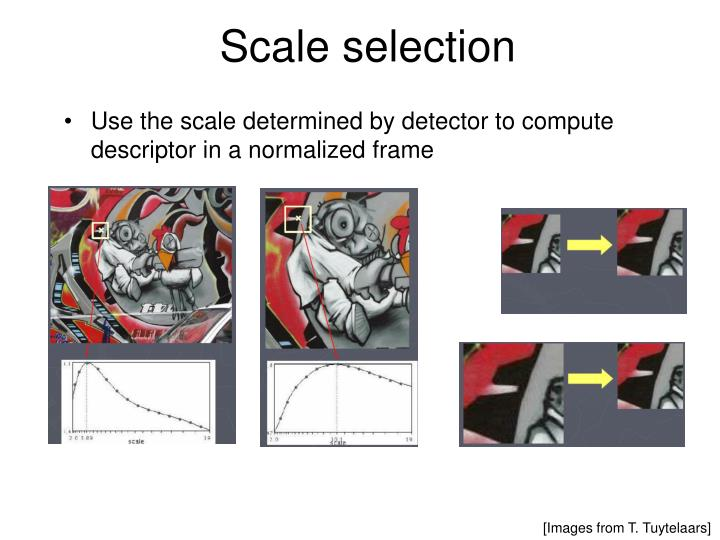 Scale selection