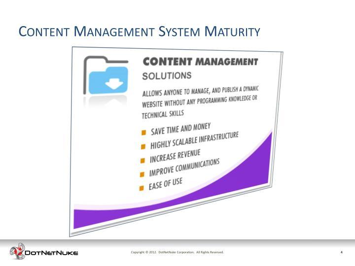 Content Management System Maturity