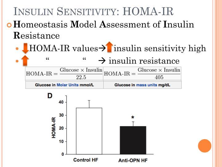 Insulin Sensitivity: