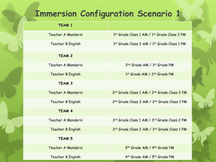Immersion Configuration Scenario 1