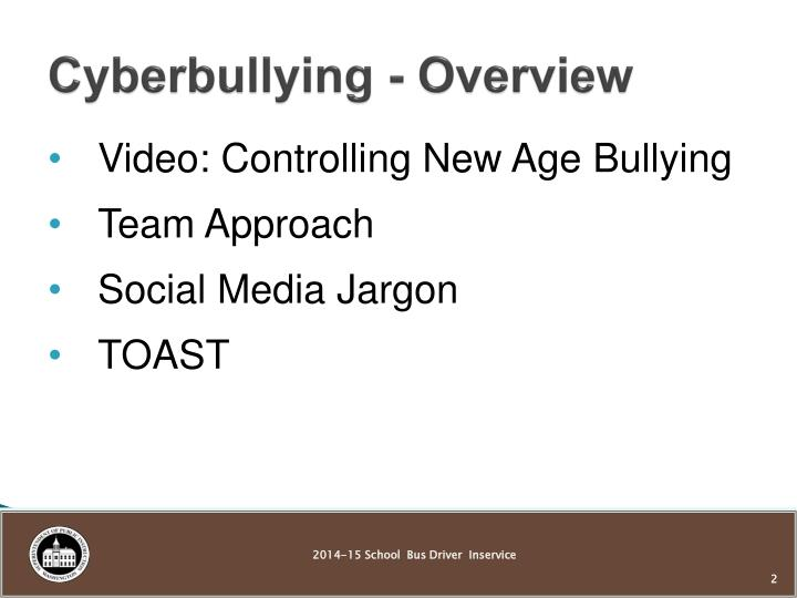 Cyberbullying overview