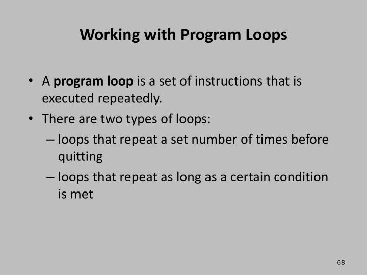 Working with Program Loops