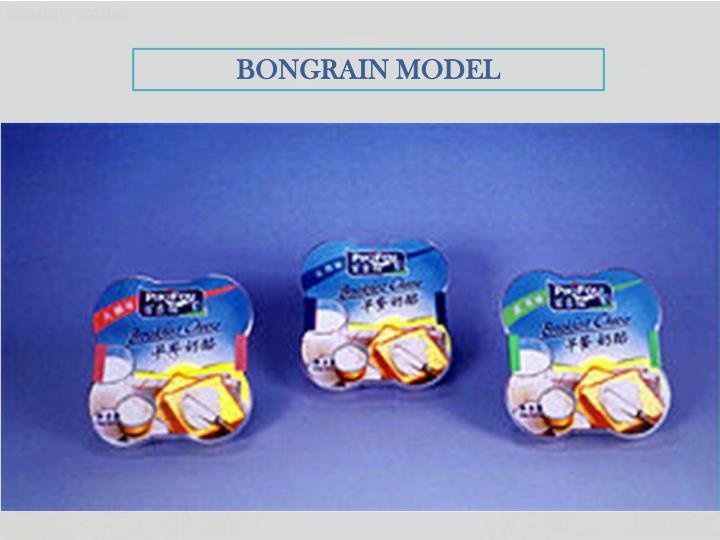 BONGRAIN MODEL