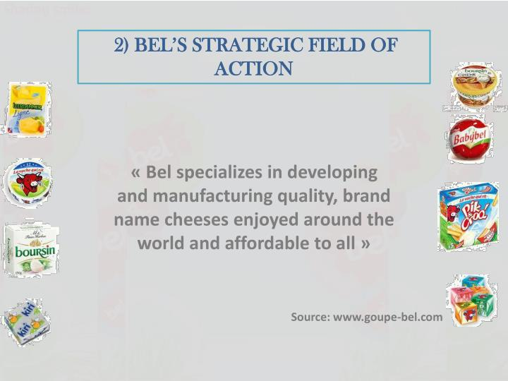 2) BEL'S STRATEGIC FIELD OF ACTION