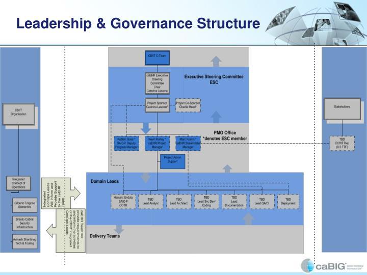 Leadership & Governance Structure