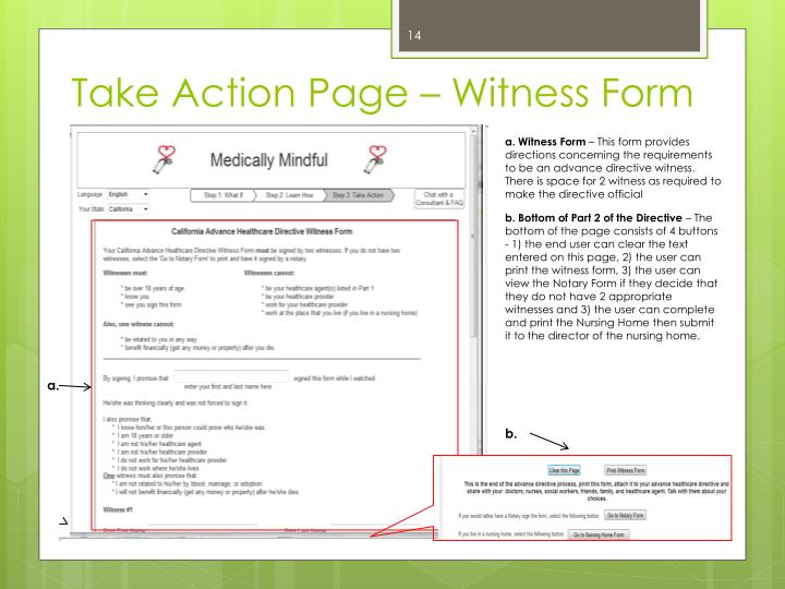 Take Action Page – Witness Form