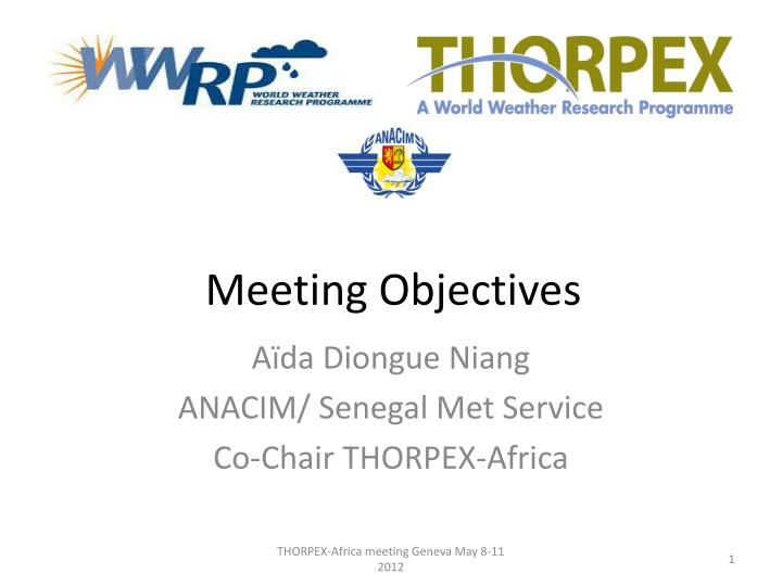 meeting objectives n.