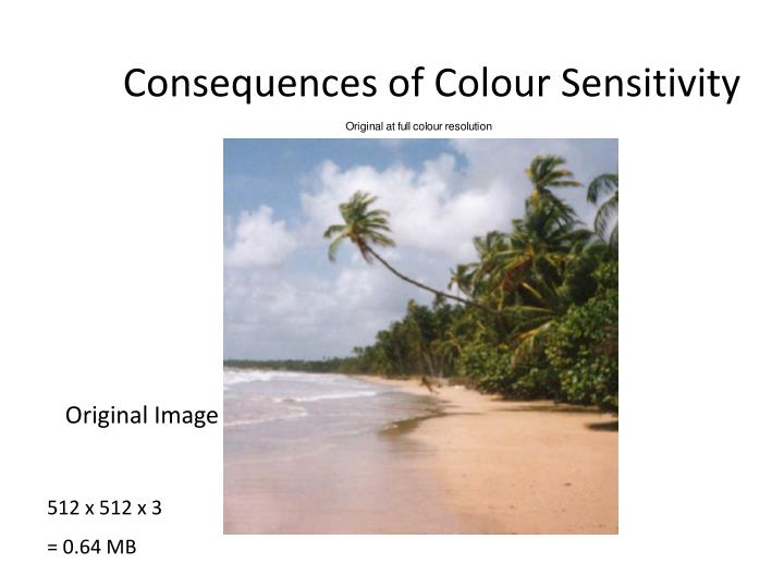 Consequences of Colour Sensitivity