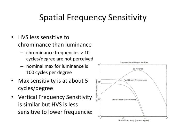 Spatial Frequency Sensitivity