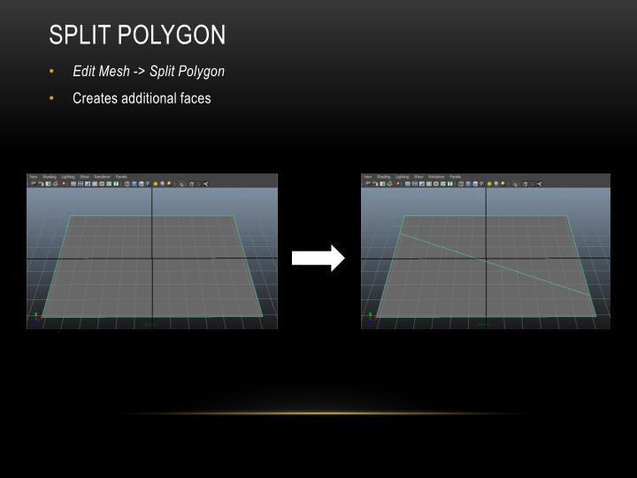Split Polygon