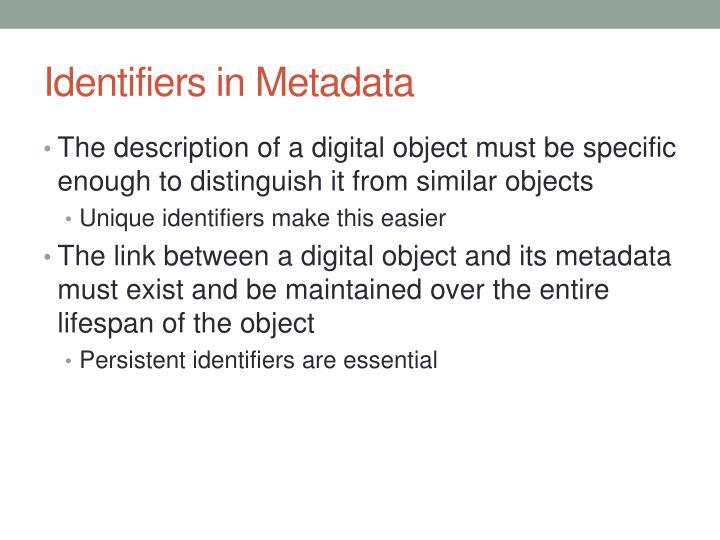Identifiers in Metadata