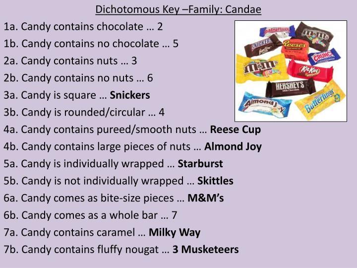 Dichotomous Key –Family: