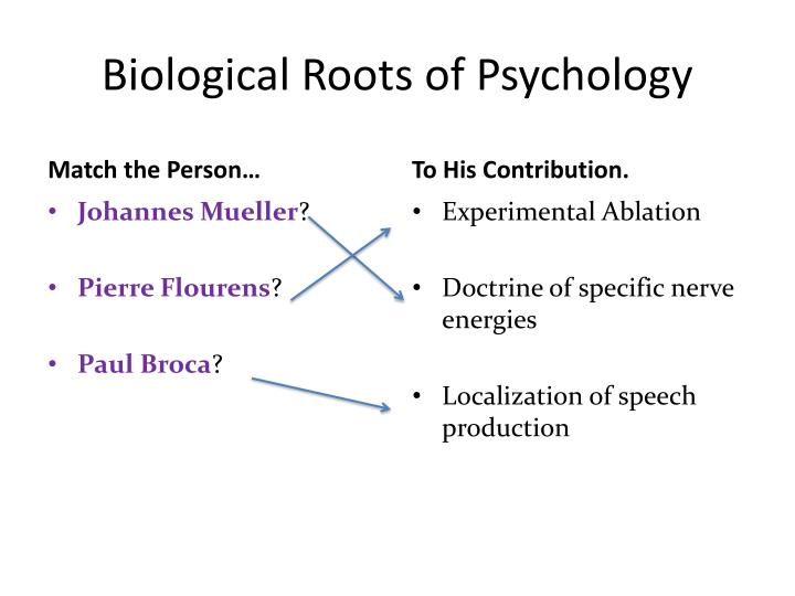 Biological Roots of Psychology