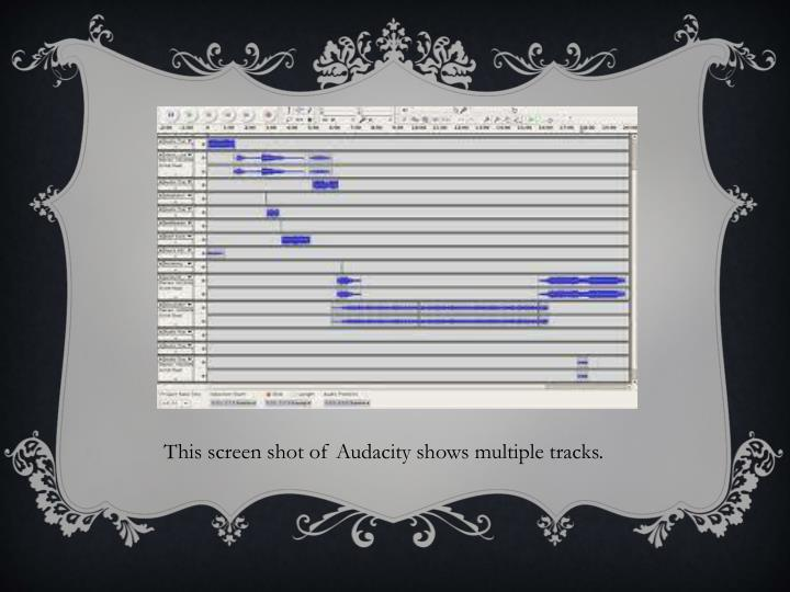 This screen shot of Audacity shows multiple tracks.