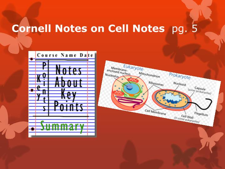 Cornell Notes on Cell Notes