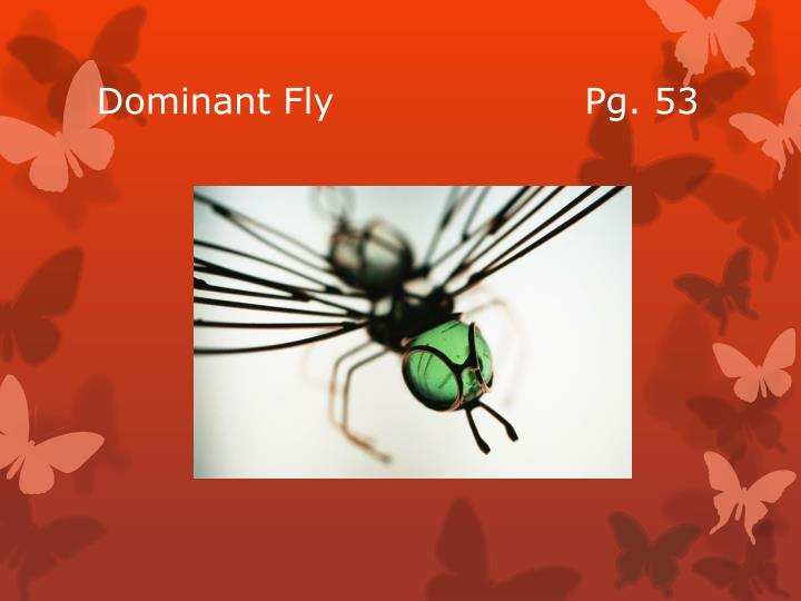 Dominant Fly                    Pg. 53