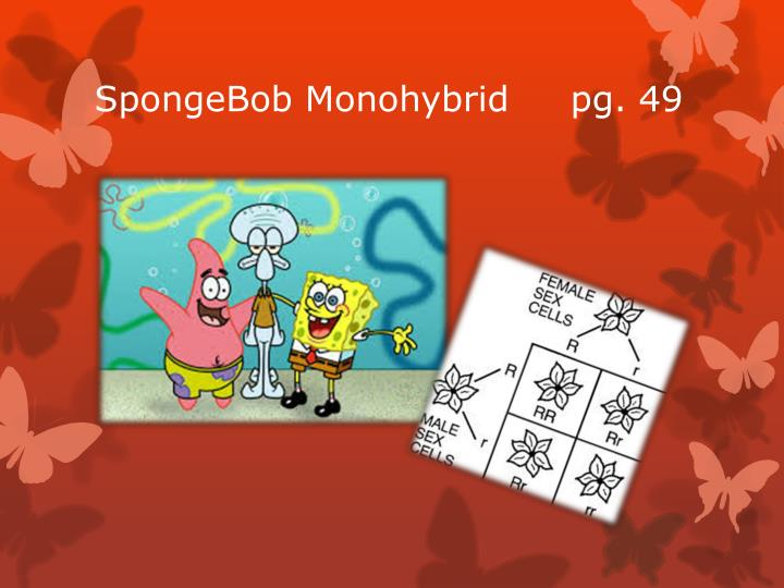 SpongeBob Monohybrid     pg. 49