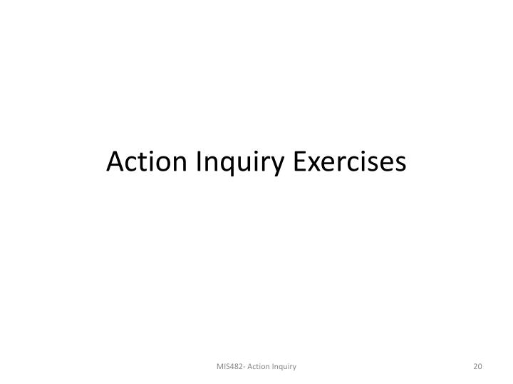 Action Inquiry Exercises