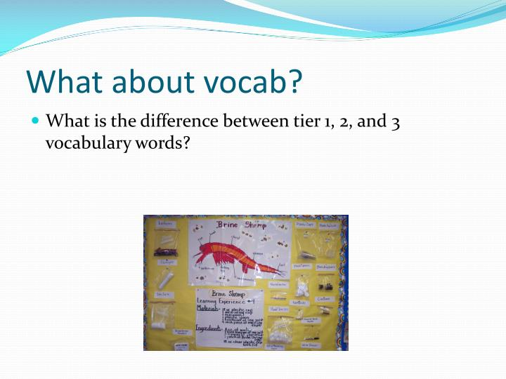 What about vocab?