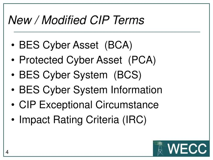 New / Modified CIP Terms