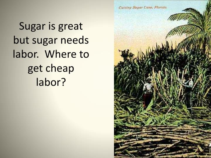 Sugar is great