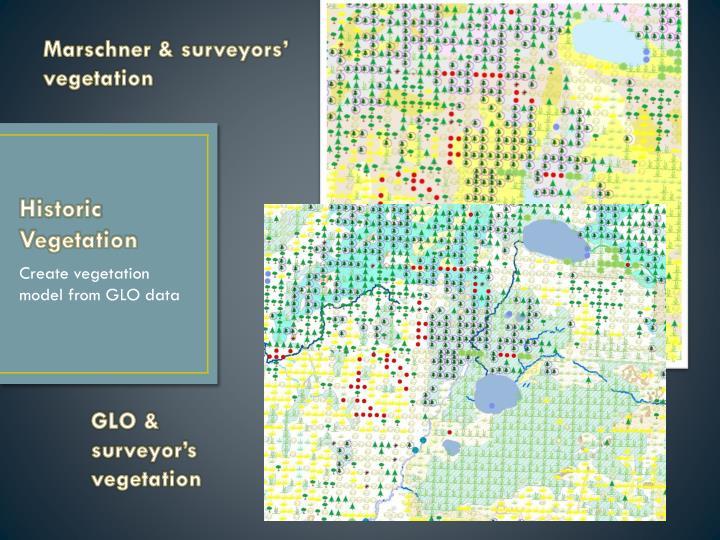 Marschner & surveyors'