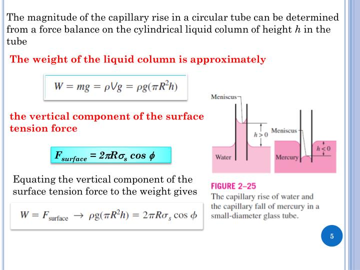 The magnitude of the capillary rise in a circular tube can
