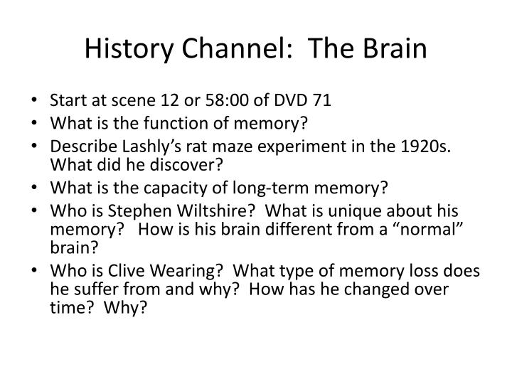 History channel the brain