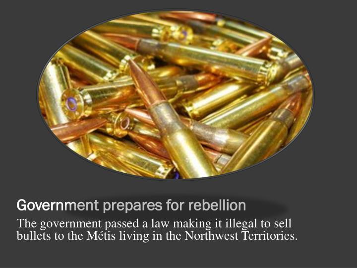 Government prepares for rebellion
