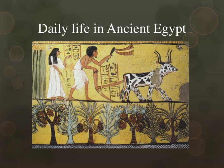 daily life in ancient egypt essay As ancient civilizations go, the egyptians are by far one of the more well known their pyramids still stand to this day, and their mummies and sarcophagi pepper our museums, but is there more to them turns out, some aspects of our modern life found their start in egypt the egyptians were.