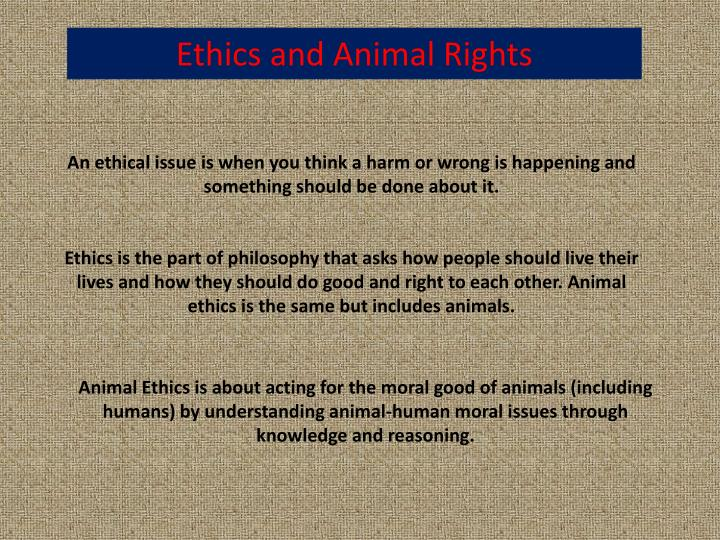 Ethics and Animal Rights