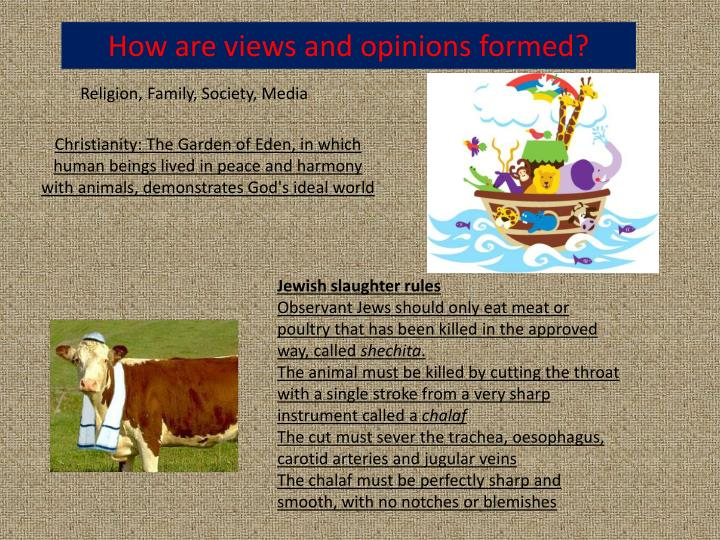 How are views and opinions formed?