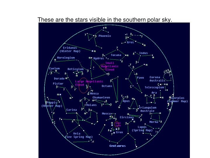 These are the stars visible in the southern polar sky.