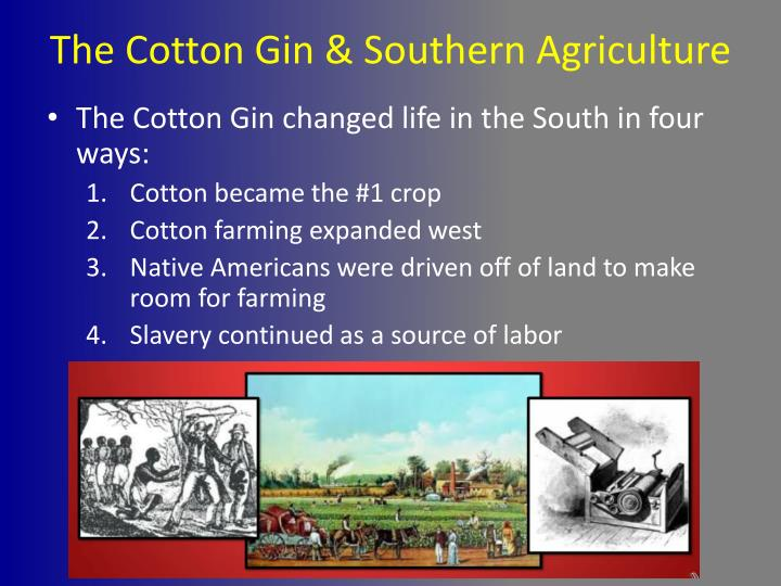 The Cotton Gin