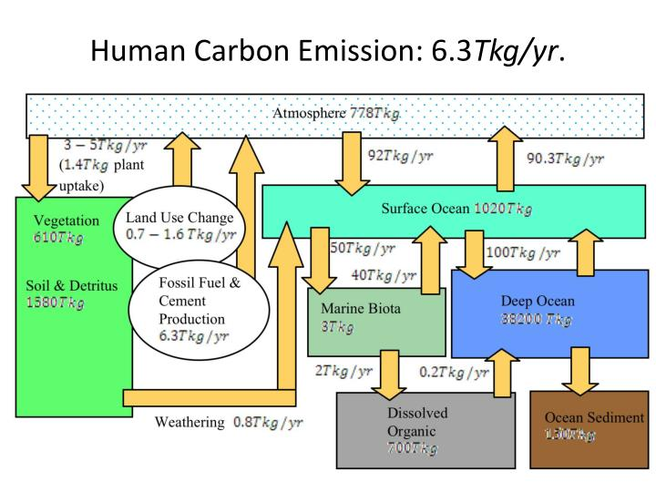 Human Carbon Emission: 6.3