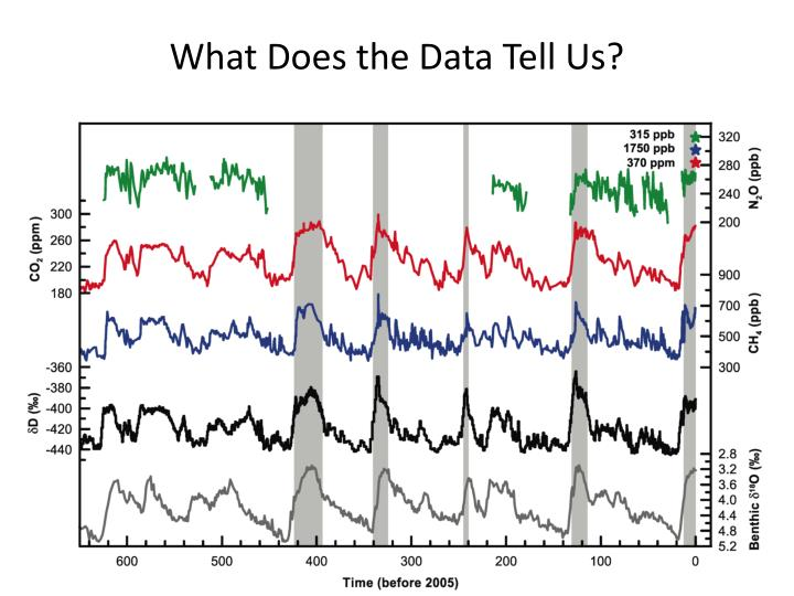 What Does the Data Tell Us?