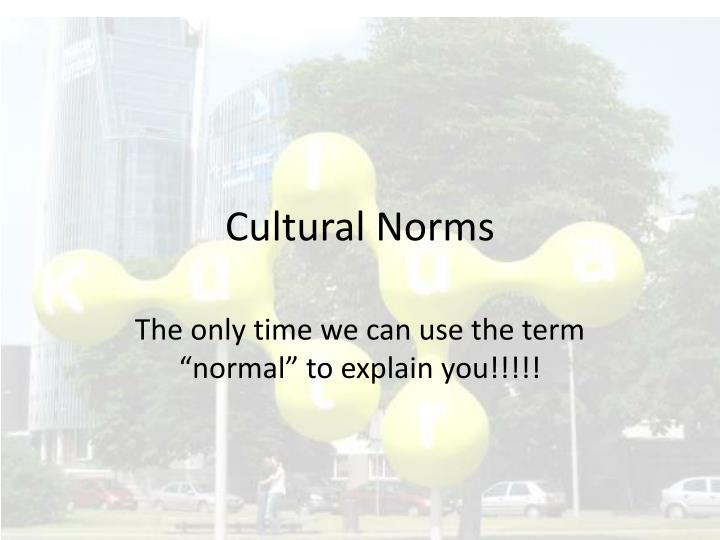 cultural norms n.