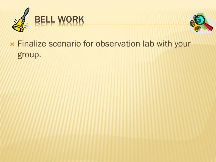 Finalize scenario for observation lab with your group.