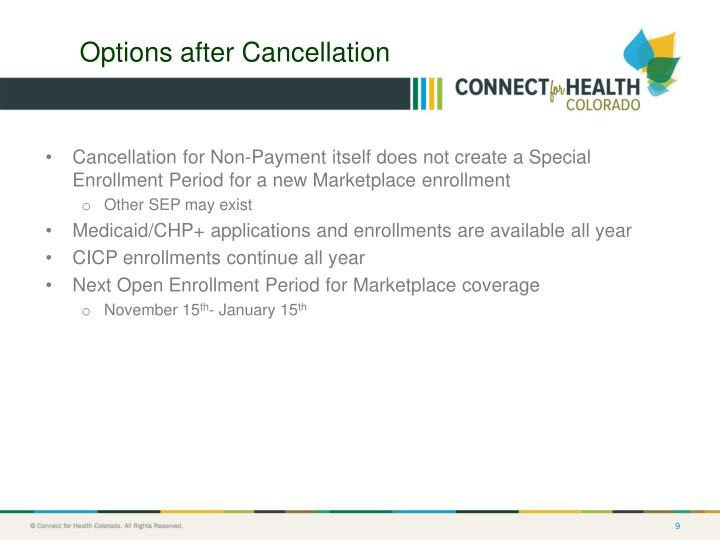 Options after Cancellation