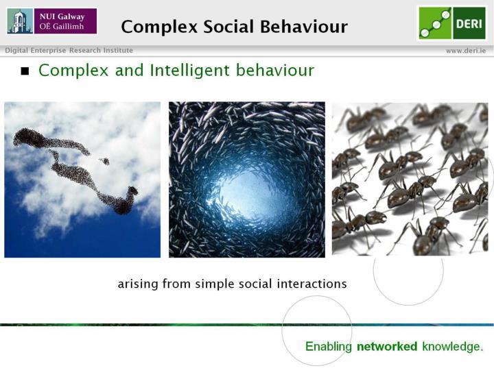 Complex Social Behaviour