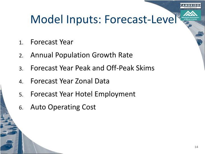 Model Inputs: Forecast-Level