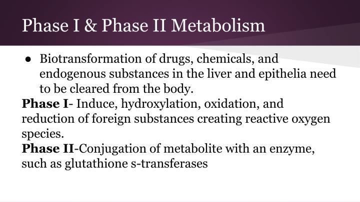 Phase I & Phase II Metabolism