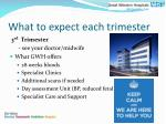 what to expect each trimester2