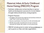 maternal infant early childhood home visiting miechv program